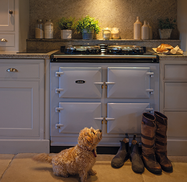 Dog and boots by the AGA