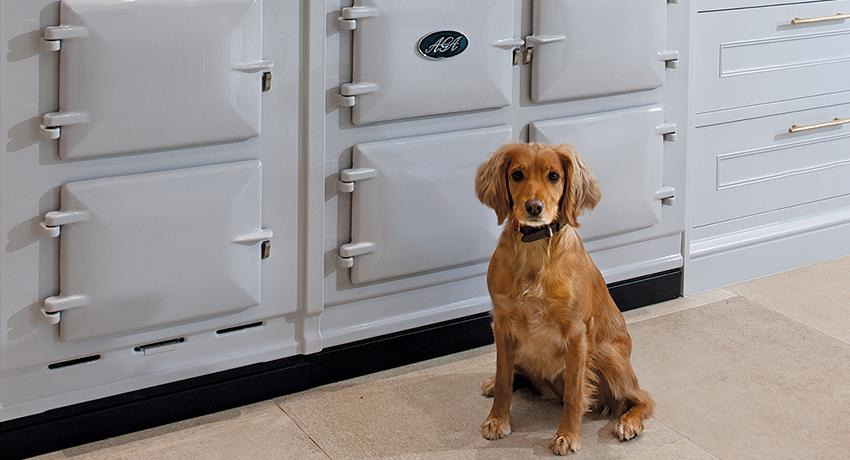 Dog sat next to an AGA Dual Control in Pearl Ashes