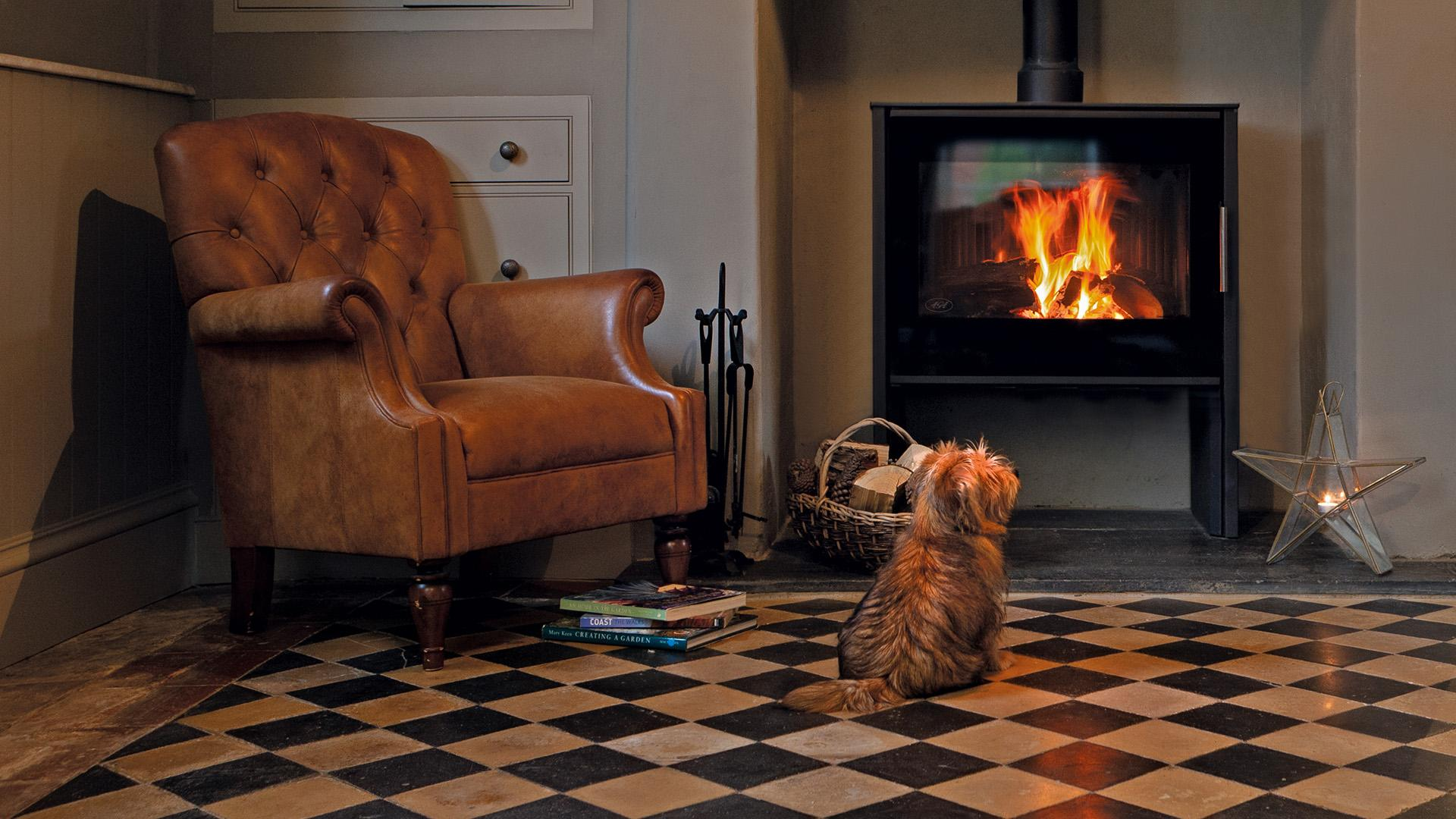 AGA Wood burning Stove with Norfolk Terrier