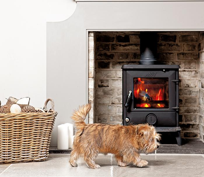 AGA Ludlow stove with dog