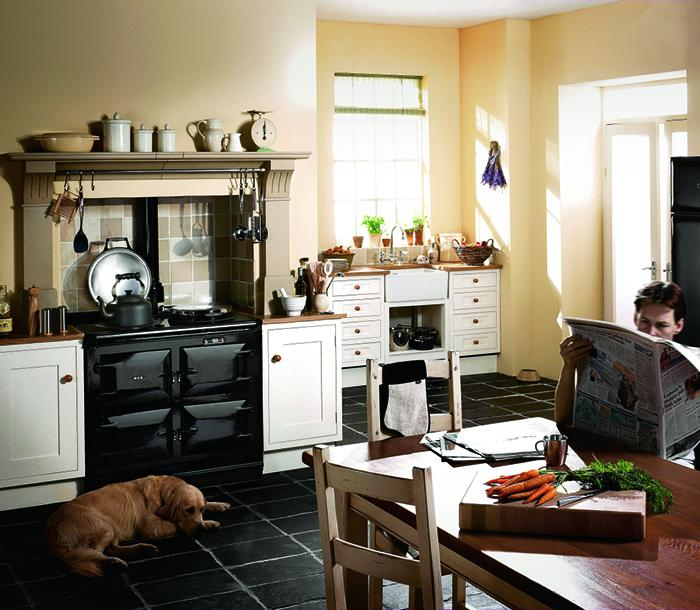 black 3 oven AGA with dog and man reading a paper