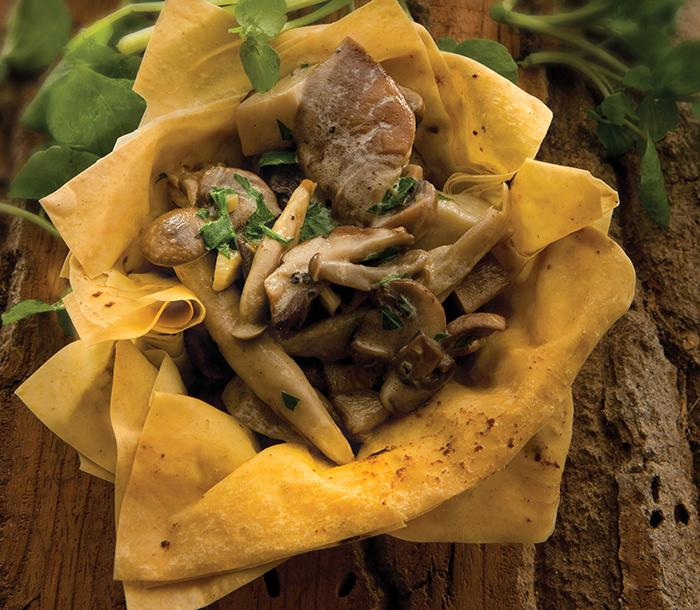 Mushroom and Pesto Filo Cups